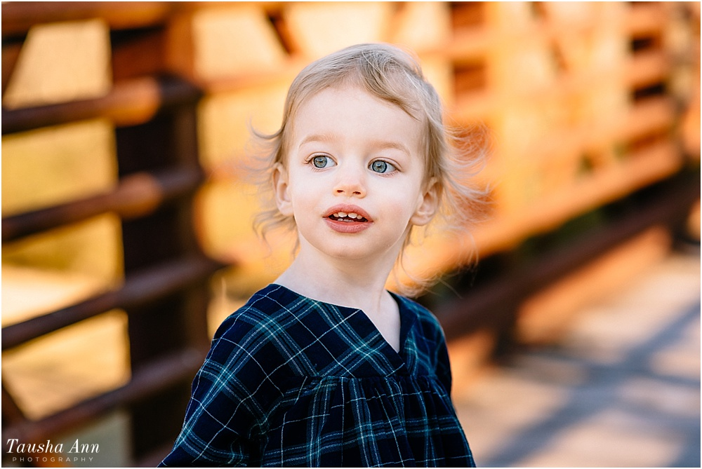 Rachel_2_Years_Old_Toddler_Portraits_Tausha_Ann_Photography_Nashville_Franklin_TN_Family_Photography-4