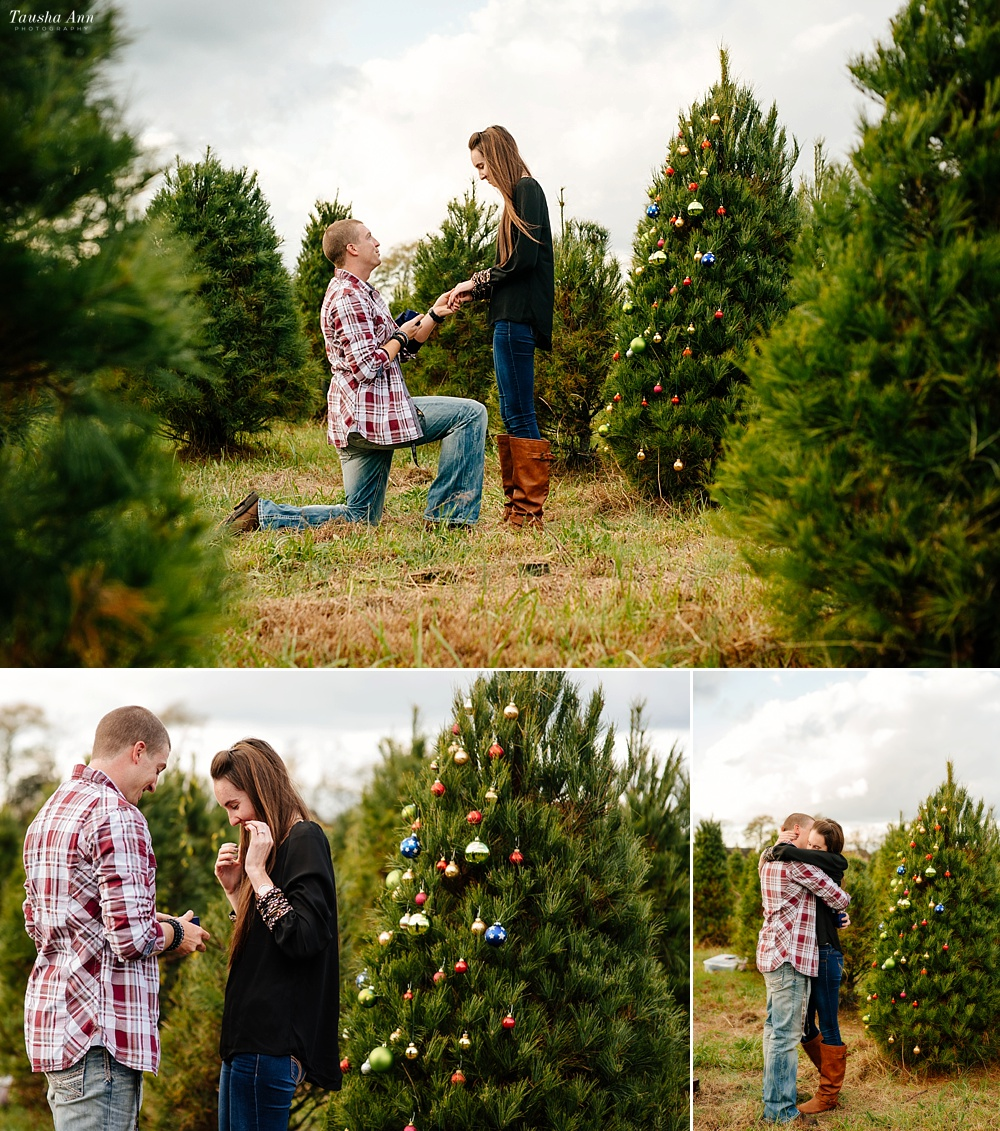 Surprise Proposal at Country Cove Christmas Tree Farm. Guy on knee, girl shocked.