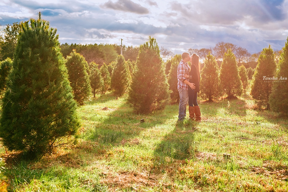 Surprise Proposal at Country Cove Christmas Tree Farm. Kissing, backlit by the sun and beautiful cloudy sky.