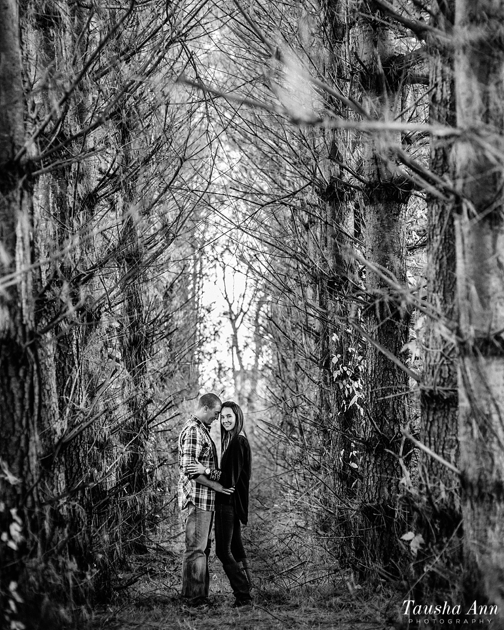 Surprise Proposal at Country Cove Christmas Tree Farm. Portrait in between a sea of trees.