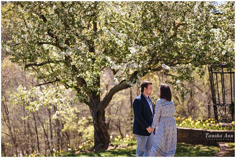 Surprise Proposal at Cheekwood Botanical Gardens - She Said Yes - tree bokeh