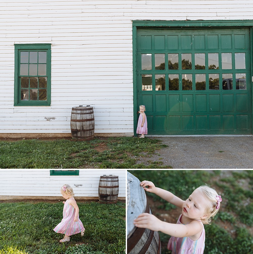 Barrett_2_Year_Birthday_Milestone_Franklin_Family_Photographer_Child_Harlinsdale_Farm_Downtown_Franklin-15.jpg