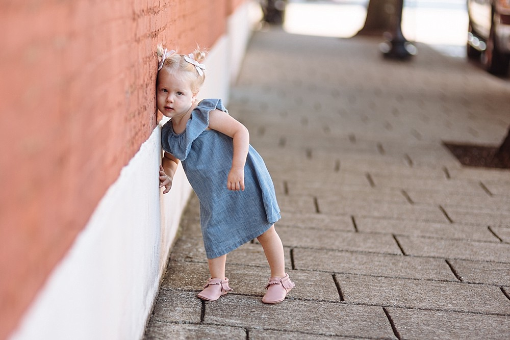Barrett_2_Year_Birthday_Milestone_Franklin_Family_Photographer_Child_Harlinsdale_Farm_Downtown_Franklin-33.jpg